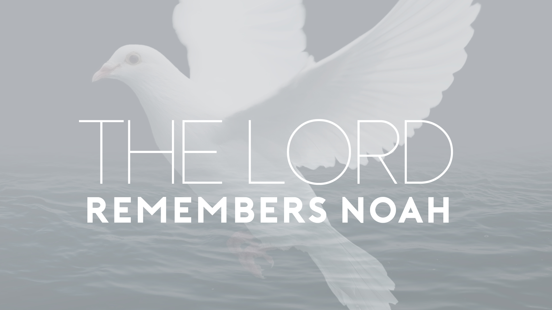 The Lord Remember Noah.jpg
