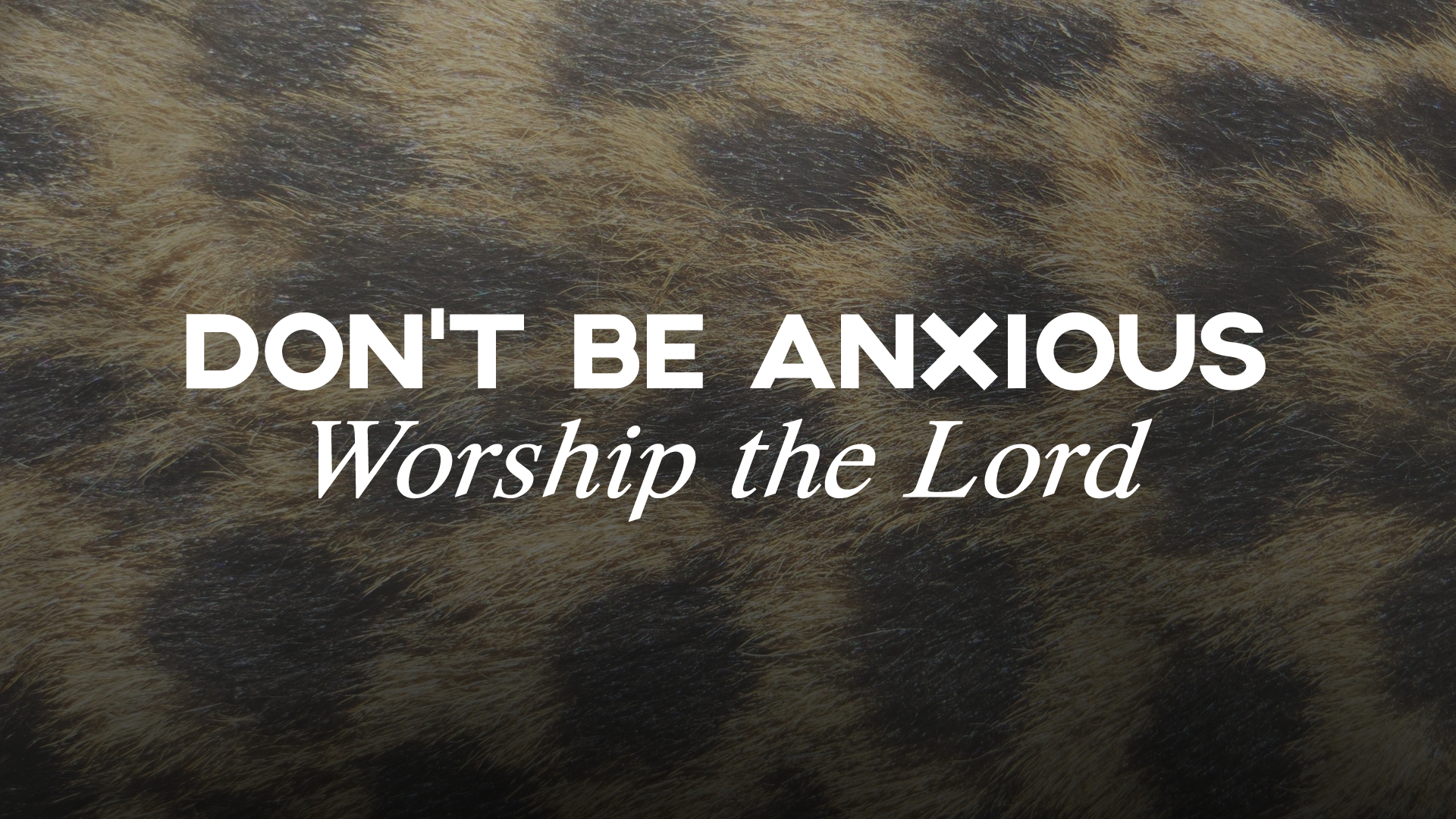 Dont Be Anxious - Worship the Lord.jpg