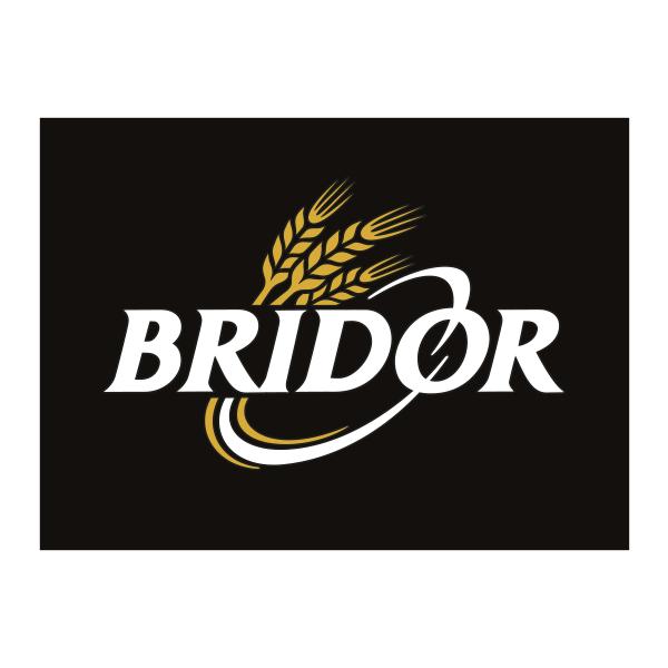 Sac-de-Pub-Reference-Bridor.png