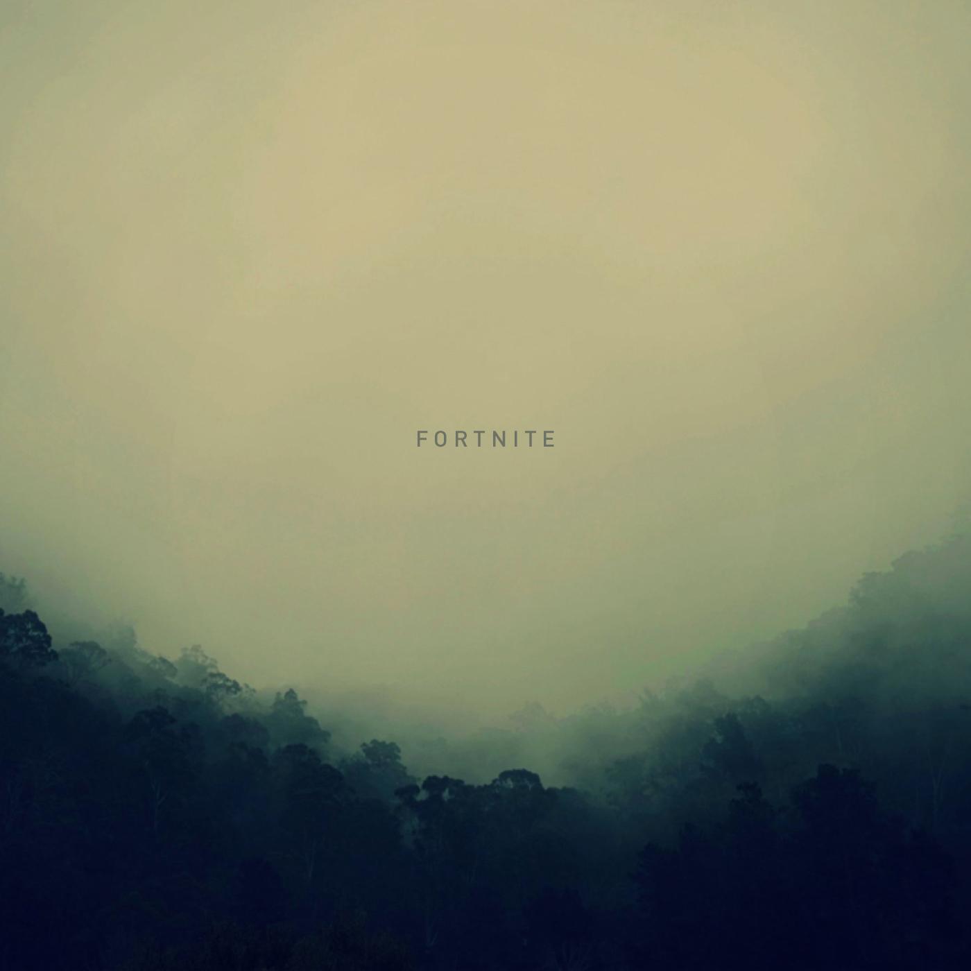 fortnite music cover