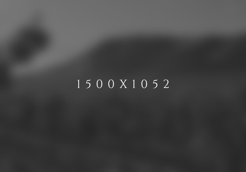 Title - Blurb