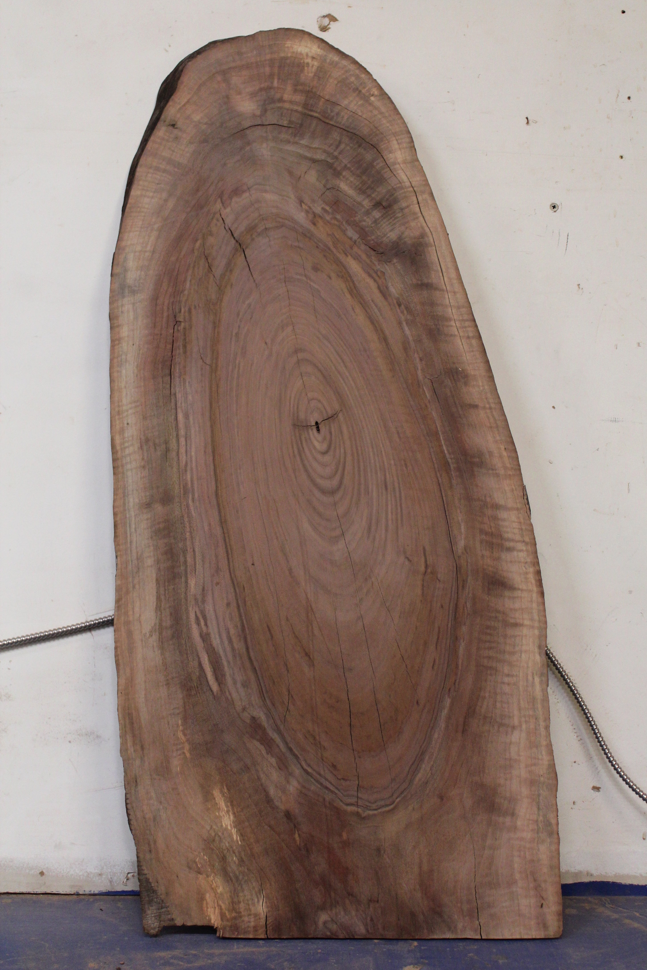 """Walnut 9   This is a fried egg board shaped 25"""" x 55"""" slab of Western Black Walnut.    See more"""