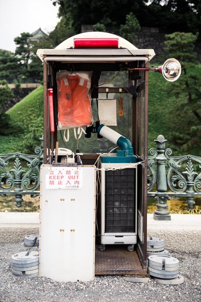 Aokigahara-©-Maartje-Strijbis-3.jpg