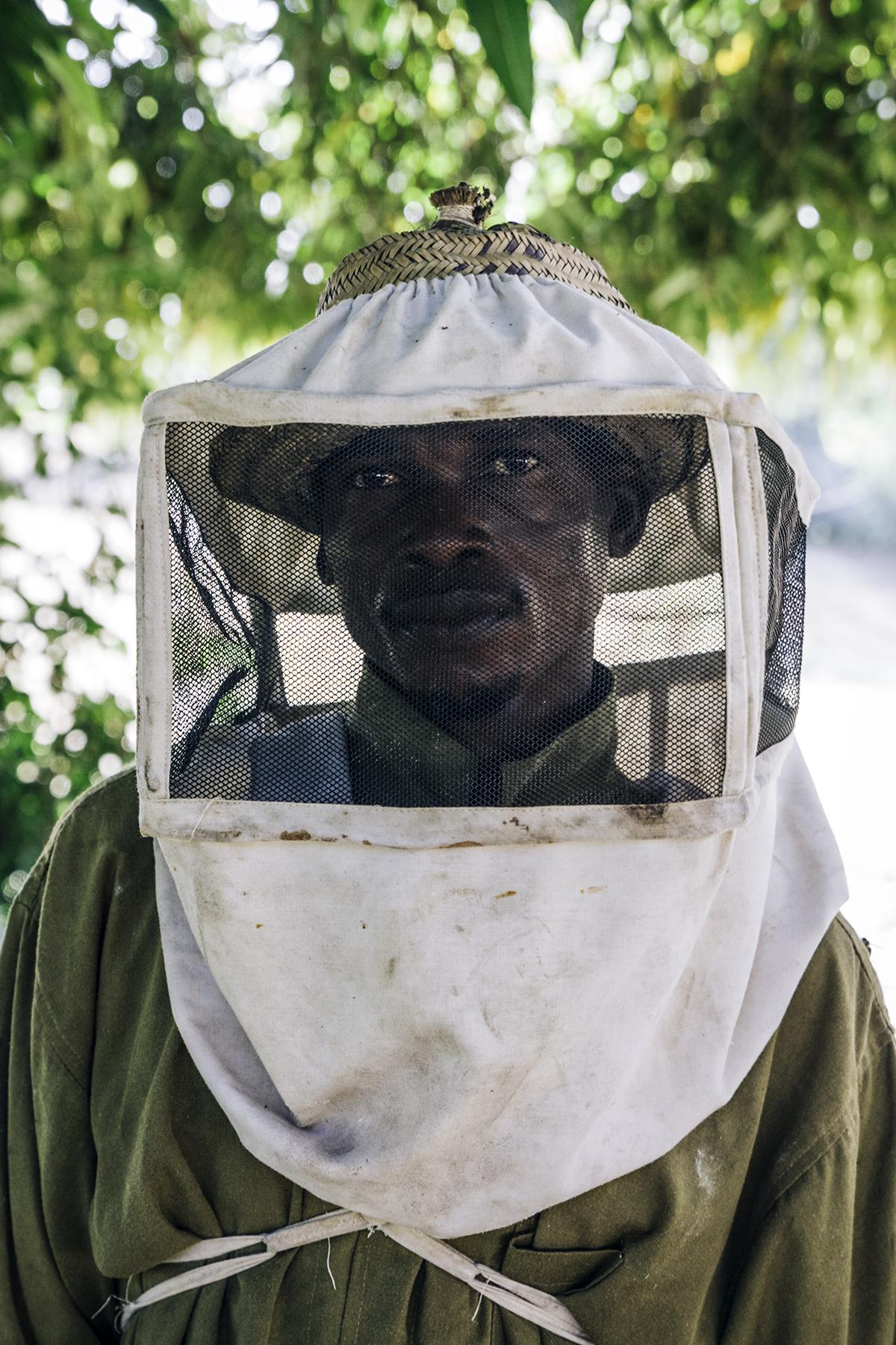 Uit de serie 'Jungle Bees' © Jurre Rompa