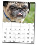 calendarlayout-sm.jpg