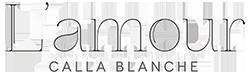 Lamour-logo.png