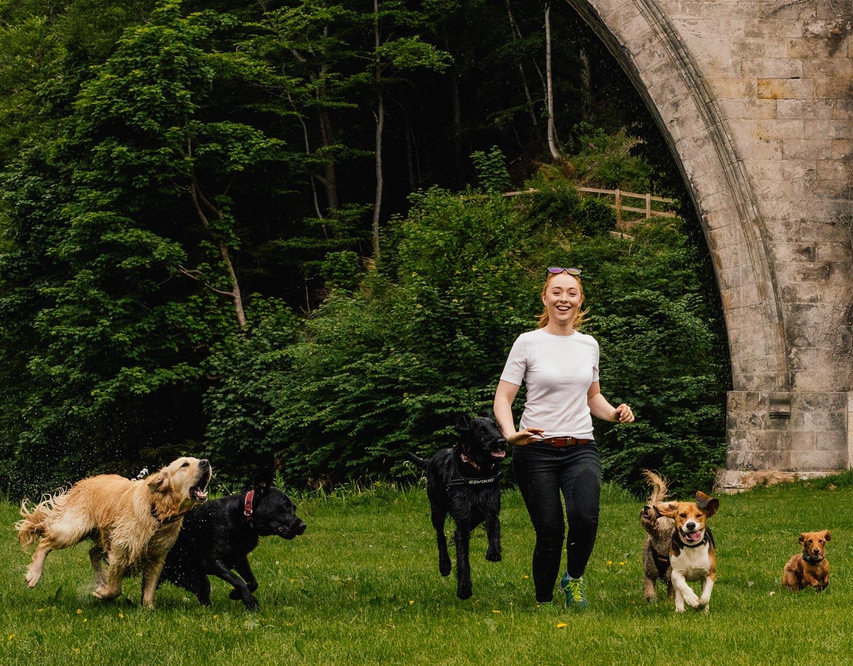 dog-walking-service-edinburgh-puppy-daycare-4.jpg