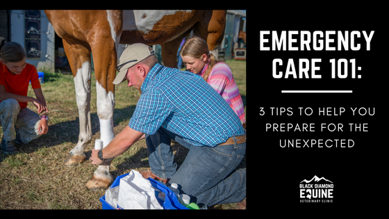 Emergency Care 101_3 Tips.png
