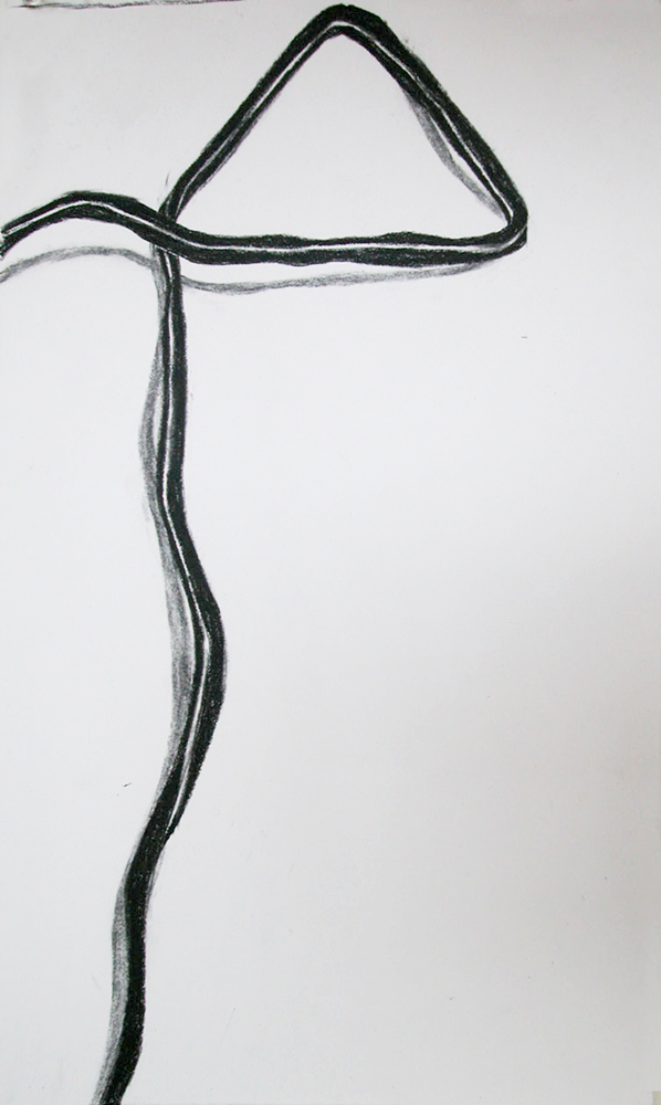 no. 21, 2002  charcoal on paper