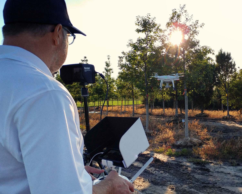 Kobes Nursery drone video