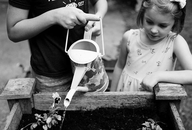 Watering can #therebelliousstoryteller #thedocumentaryapproach #beunraveled #childhoodunplugged #dearphotographer #documentyourdays #documentaryfamilyphotography #familyphotojournalism #thesincereststoryteller #shamoftheperfect #thecuriouschild #our_everyday_moments #letthekids #letthembelittle #letthemexplore #clickmagazine #editingforartists #thesweetlifeunscripted #kidsforreal #kids_of_the_lens #hellostoryteller #lettherebedelight #talesofthemoment #enjoy_today01 #cpc_feature #thebeautifulreal #runwildmychild #wildandbravelittles