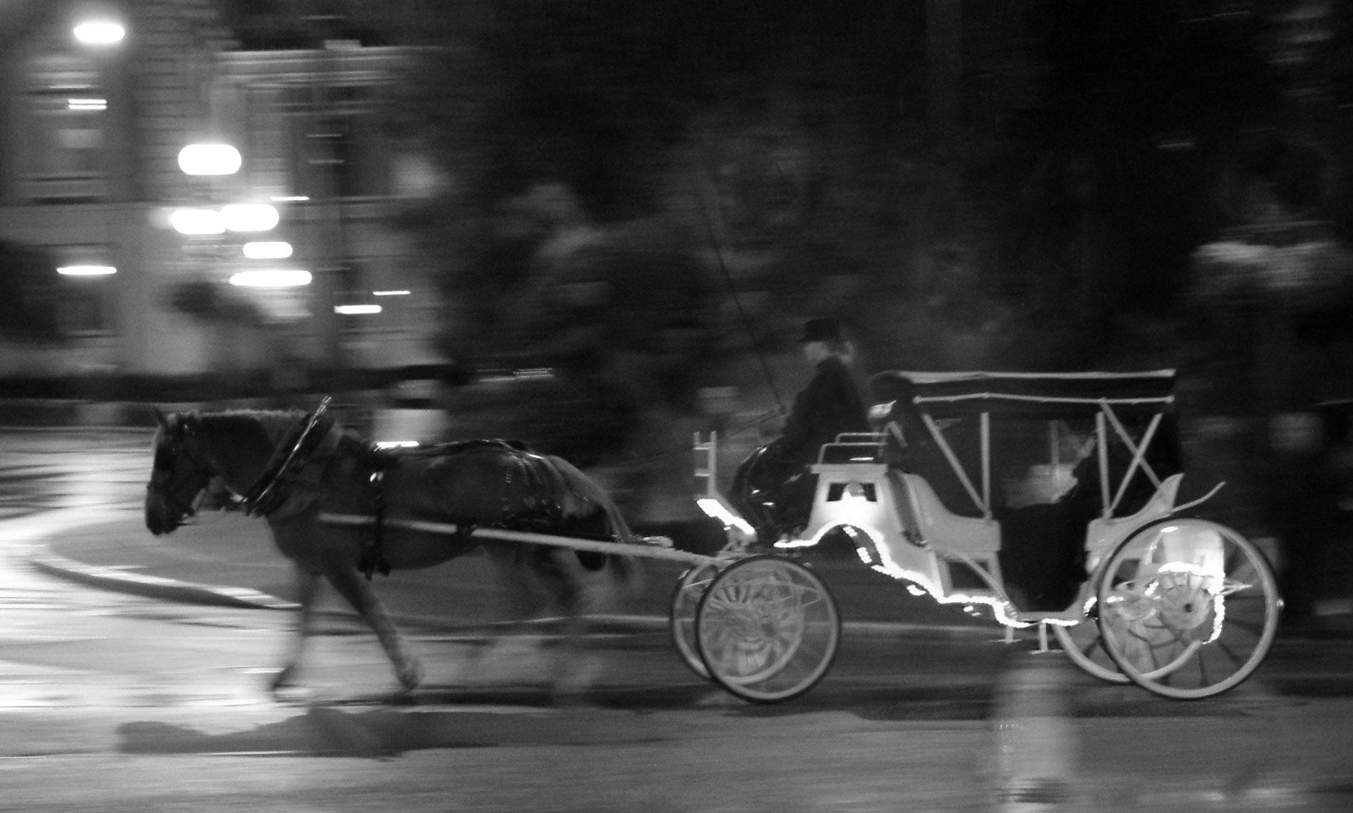 Carriage ©2018 Adam Graser Photography