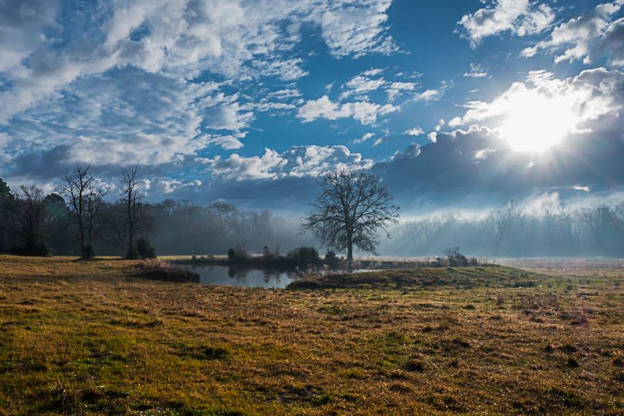 Home Place by Adam Graser Photography.jpg