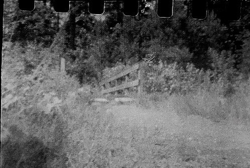 Wooden Footbridge. #tylerstatepark #photography #texas#ilfordhp5plus400 #blackandwhite #35mmfilmphotography #pinholephotography #zeroimagepinhole #zeroimage
