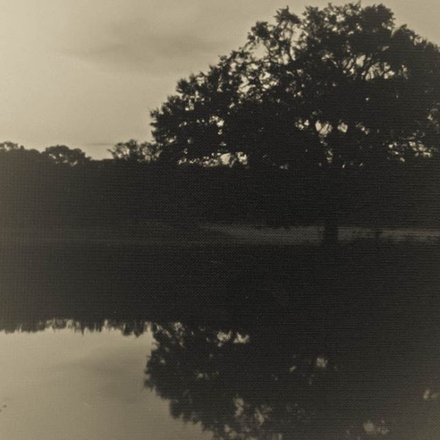 First light reflected.  #pinhole #intrepidcamera #4x5film #photography #filmphotography #Texas #moody #pictorialism #ilforddelta100 #lensless