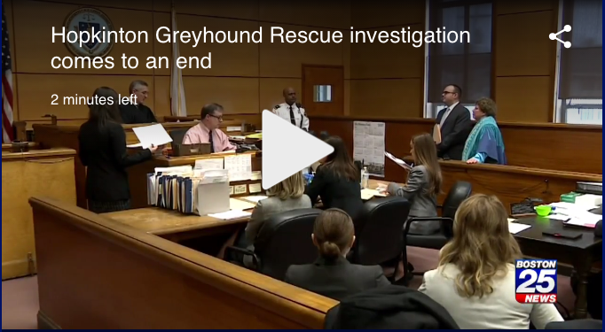 Two-year AG investigation comes to an end - August 2018: Boston 25 News reports on the Massachusetts Attorney General's two-year-long investigation into Greyhound Friends founder Louise Coleman and the misuse of donor funds. A resulting judgment in the Suffolk Superior Court requires Coleman to pay $40,000 to another Massachusetts greyhound group and ordered not to have any official role at Greyhound Friends or any fiduciary role at any other Massachusetts public Charity. Watch the news story.