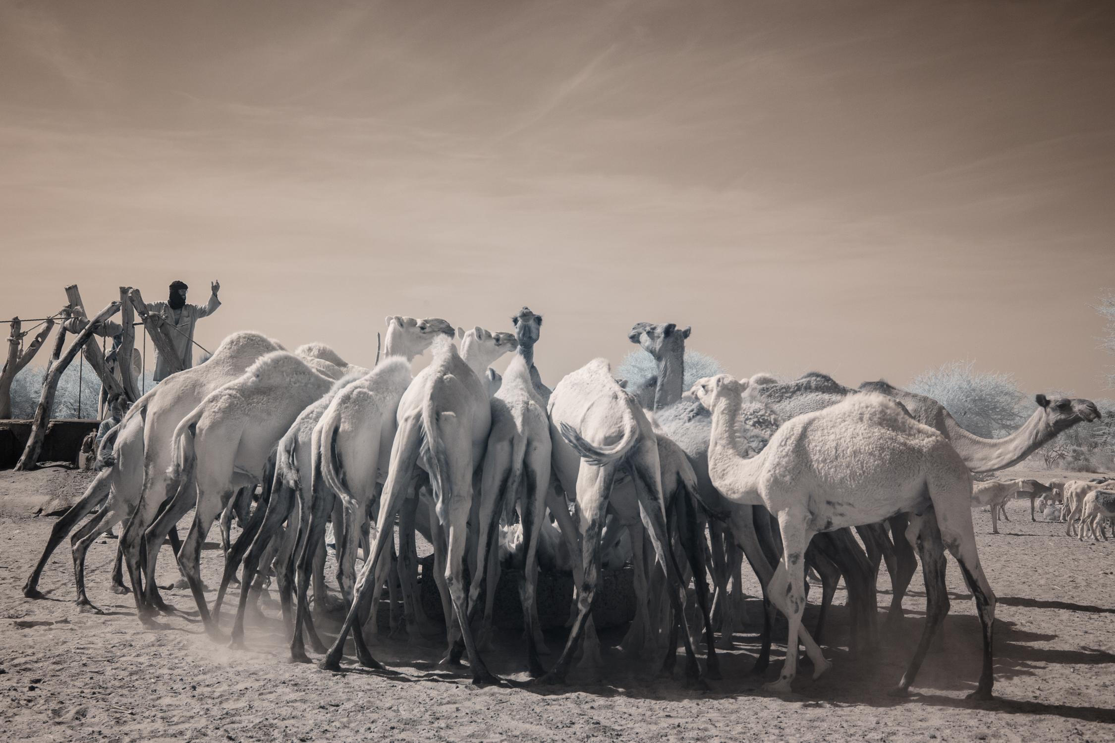 Niger_Red-125.jpg