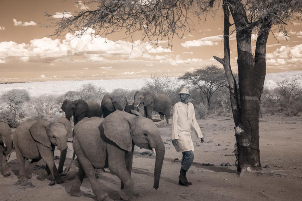 TerriGold_Kenya-15.jpg