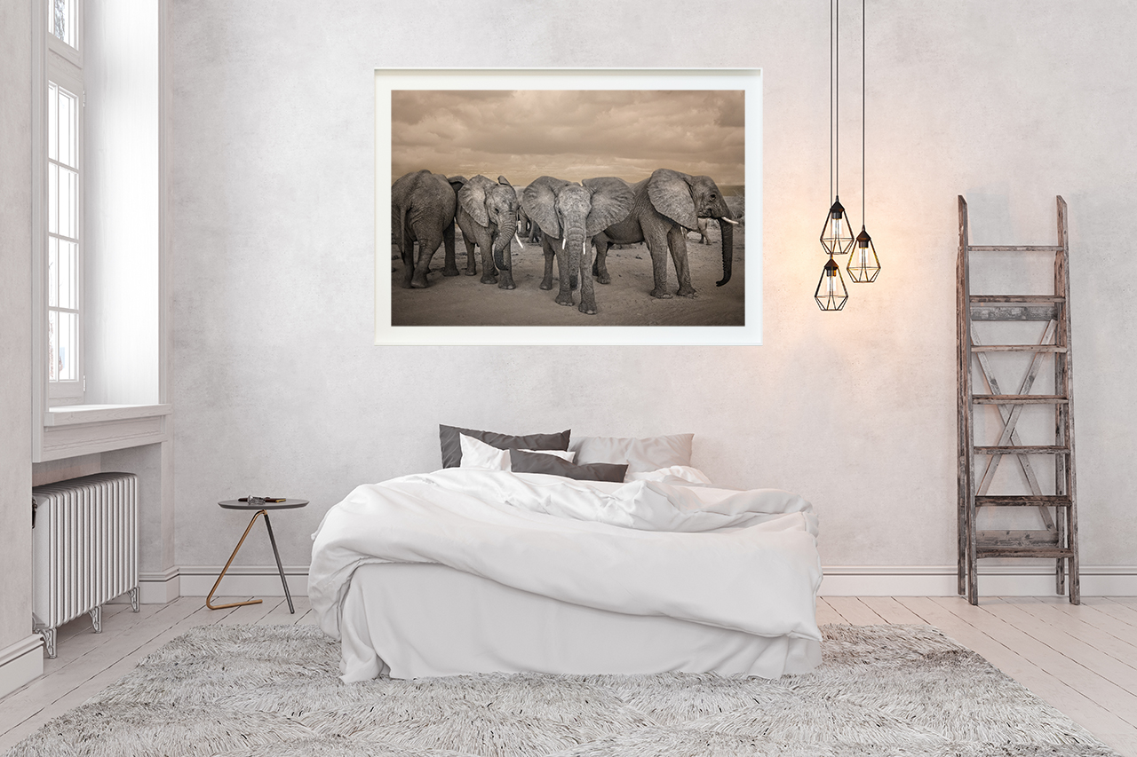 bedroom_elephants_Websize.jpg
