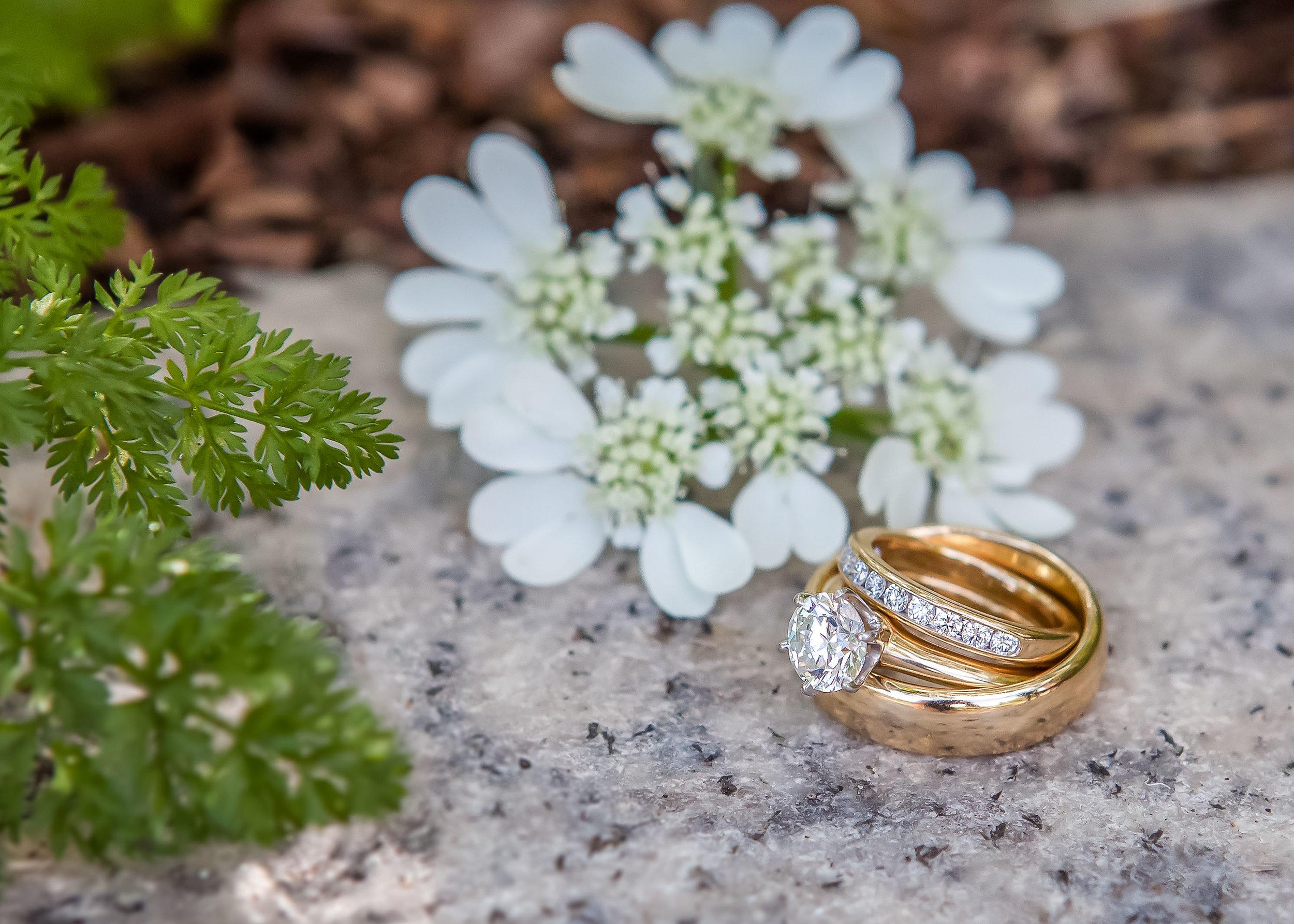 Smithsonian Institution wedding