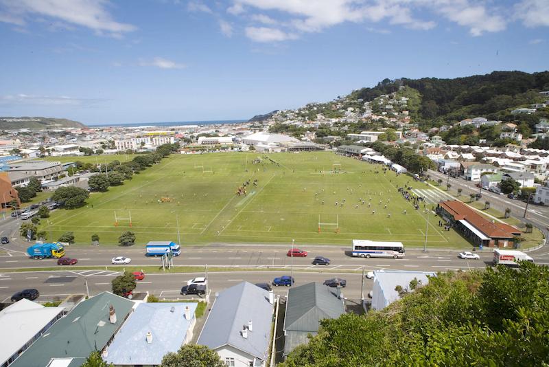 Wellington - bright sunshine, no wind!