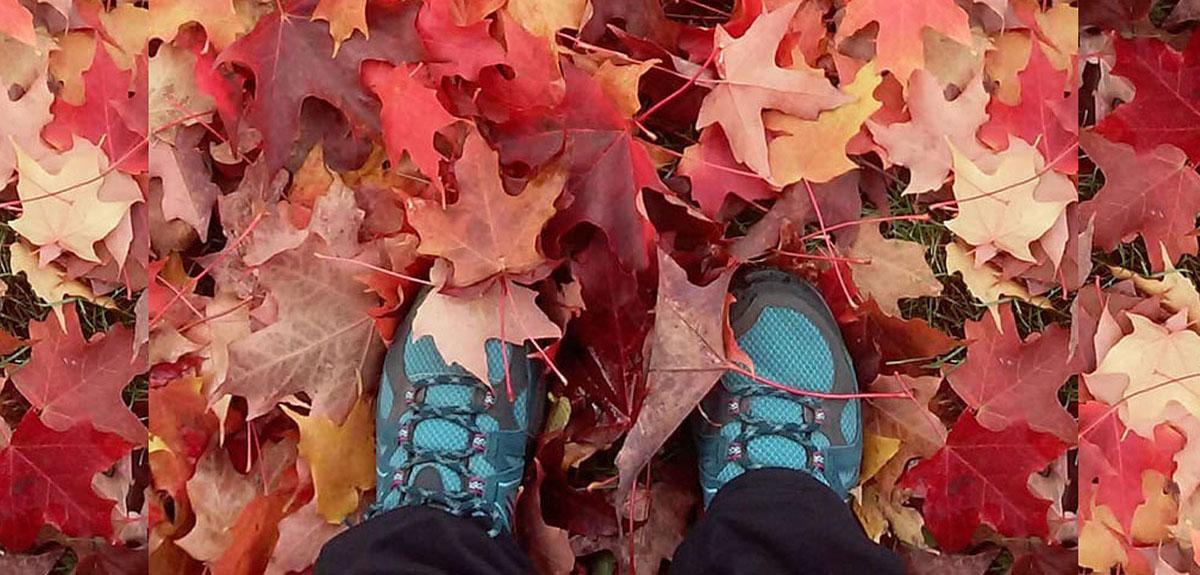 feet and leaves extended.jpg