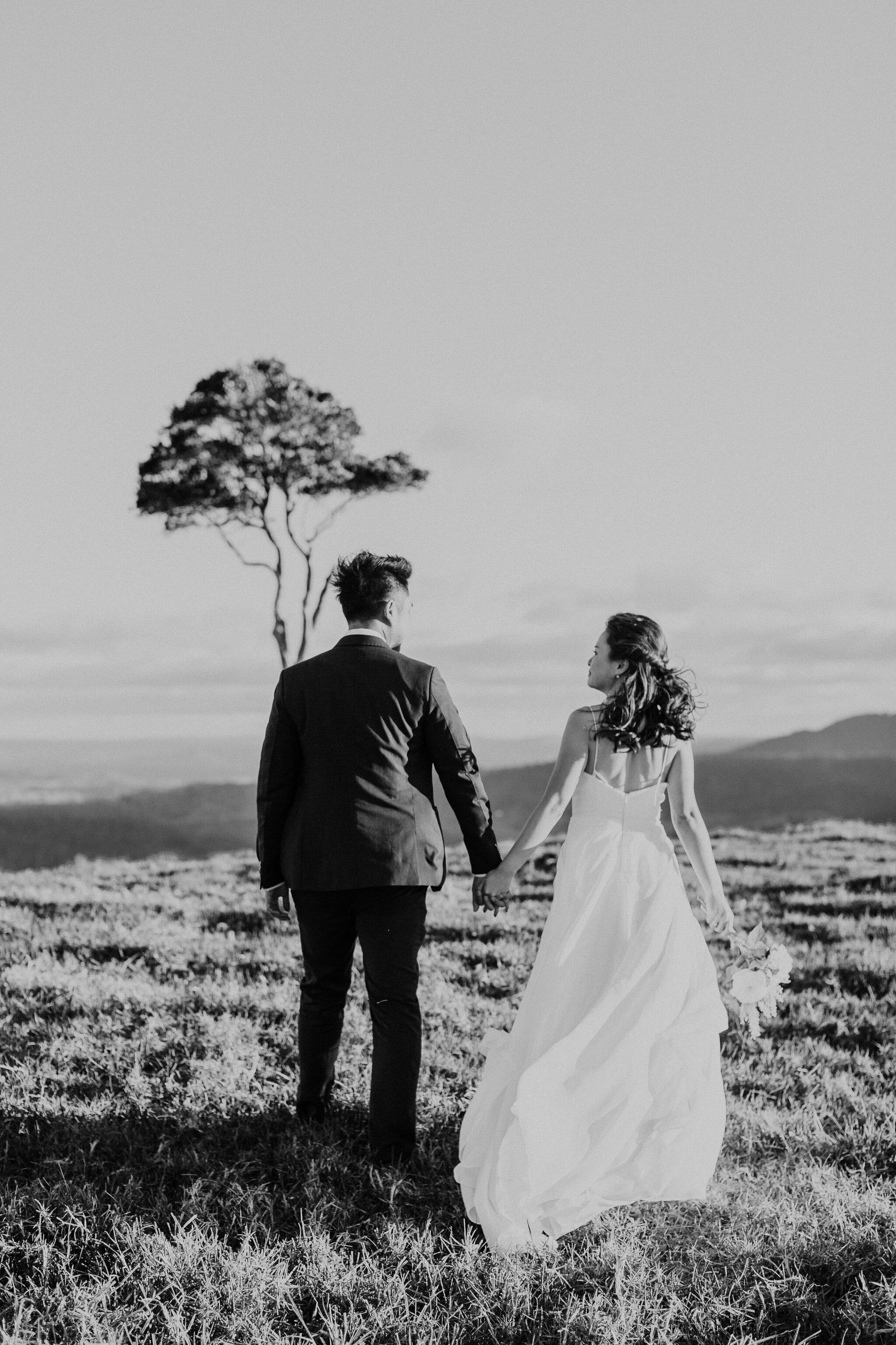 Maleny One Tree Hill Wedding - Maleny Wedding Photographer-4.jpg