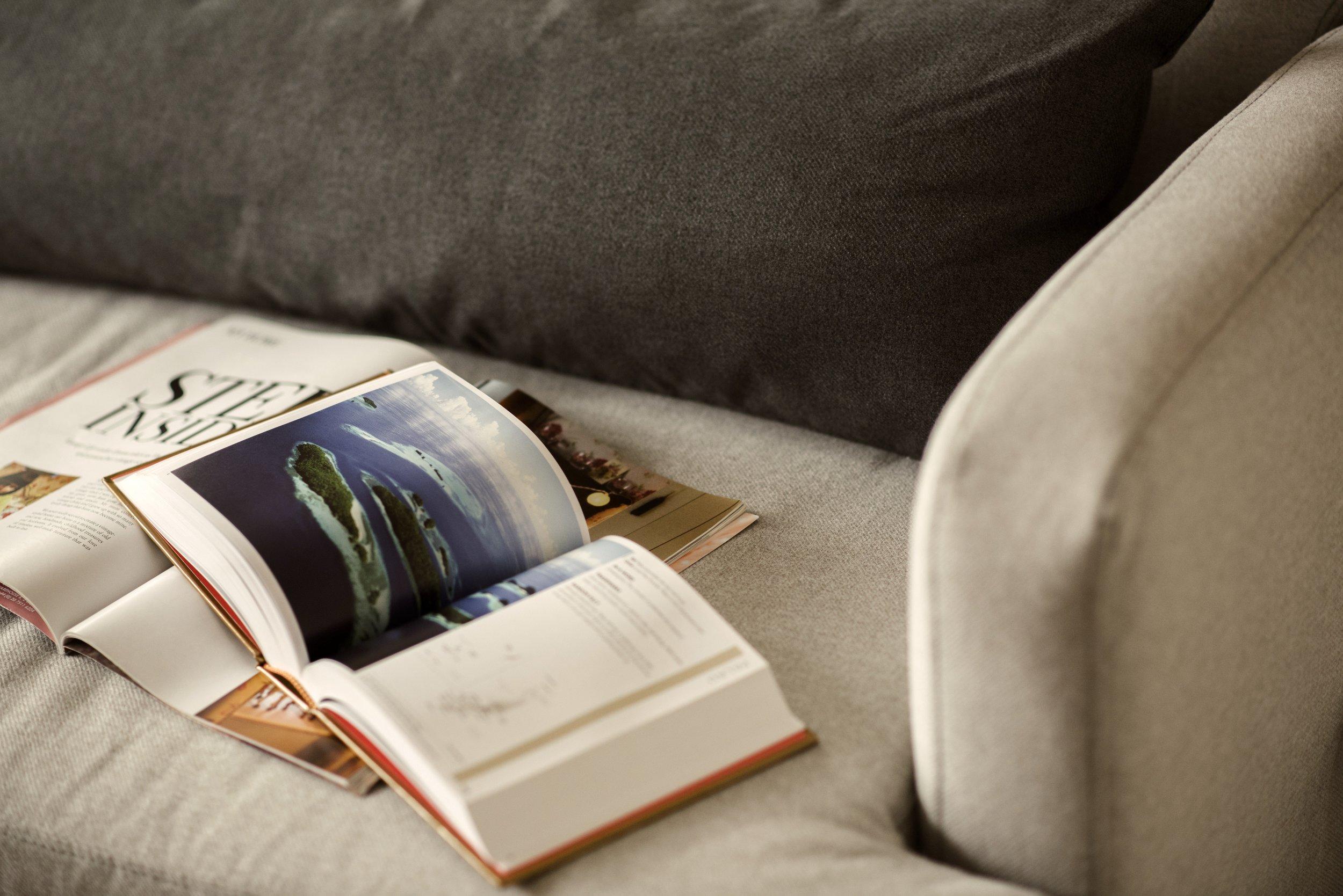 book-bindings-books-couch-1166425.jpg