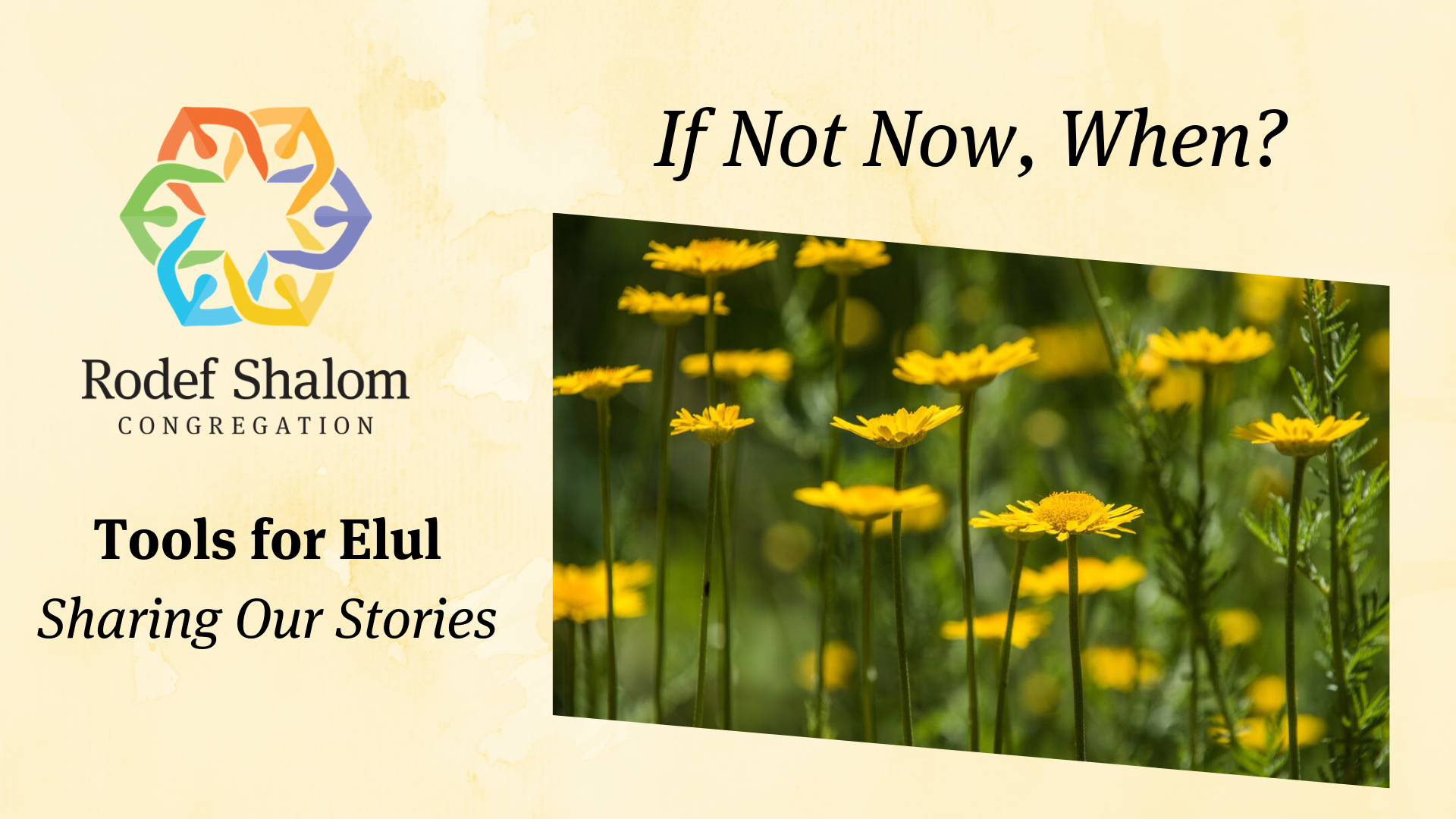 Tools for Elul Headers 8.27.19 (3).png