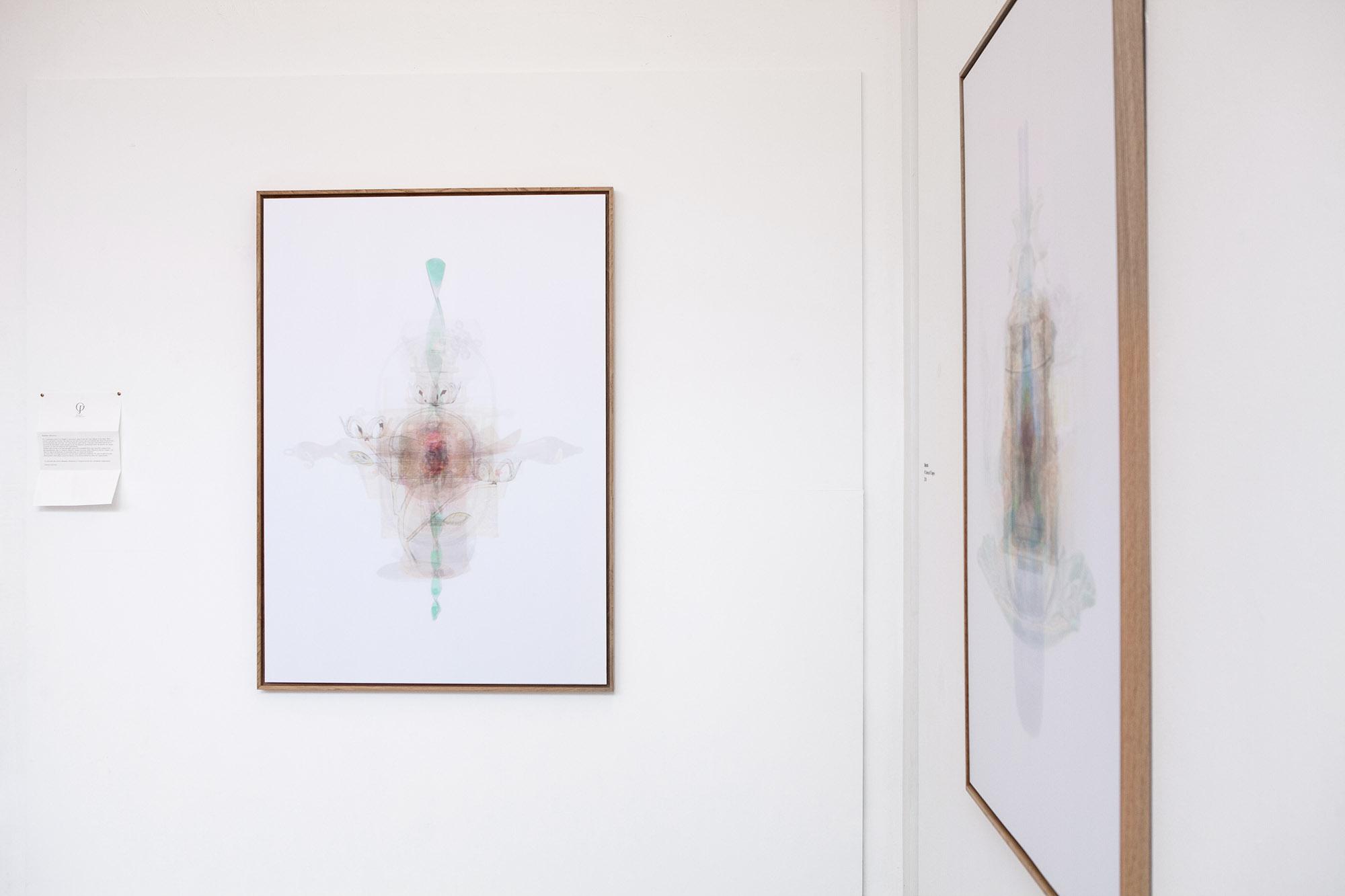 Justine Guerriat_Musée de la Photographie, Charleroi, 2014-2015_008.jpg