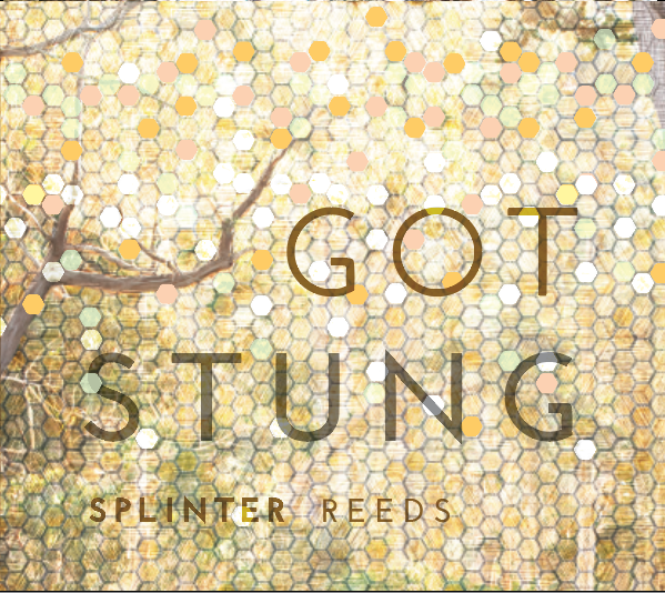 Got Stung (2015) on Splinter Reeds Recordings - Debut album from Splinter Reeds featuring new music by Marc Mellits, Ryan Brown, Ned McGowan, Erik DeLuca, Kyle Bruckmann and Jordan Glenn.