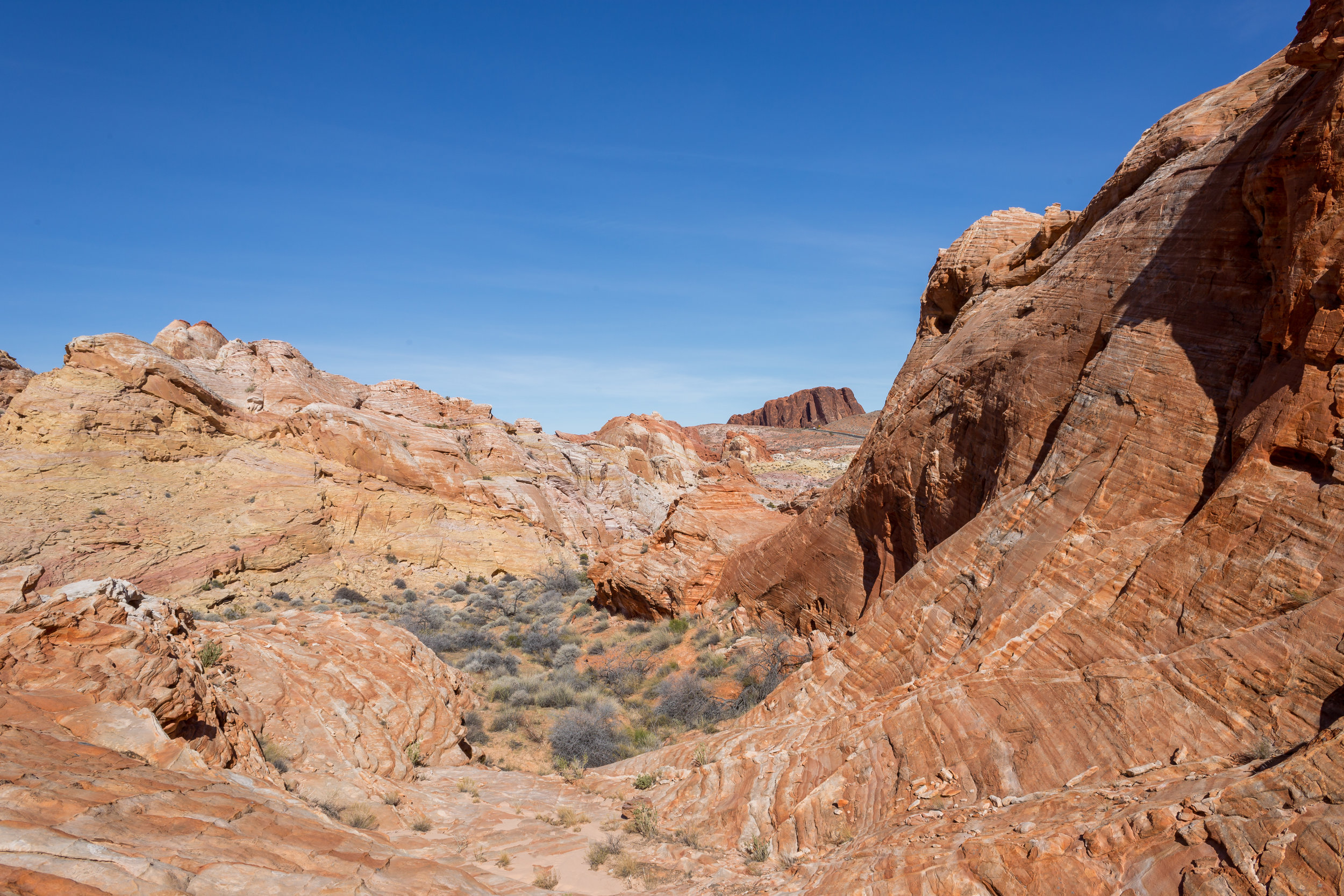 2018_01_28 Valley of Fire with Kayla-IMG_3525.jpg