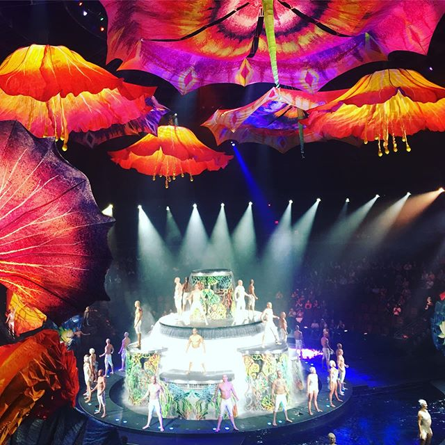 What an amazing night thanks to my wonderful 2013 bride and groom @ellahcj and @alex.stopa who are incredible musicians in Le Reve for spoiling us with vip seats - it was a magical evening !! @ebopaloo @frevents