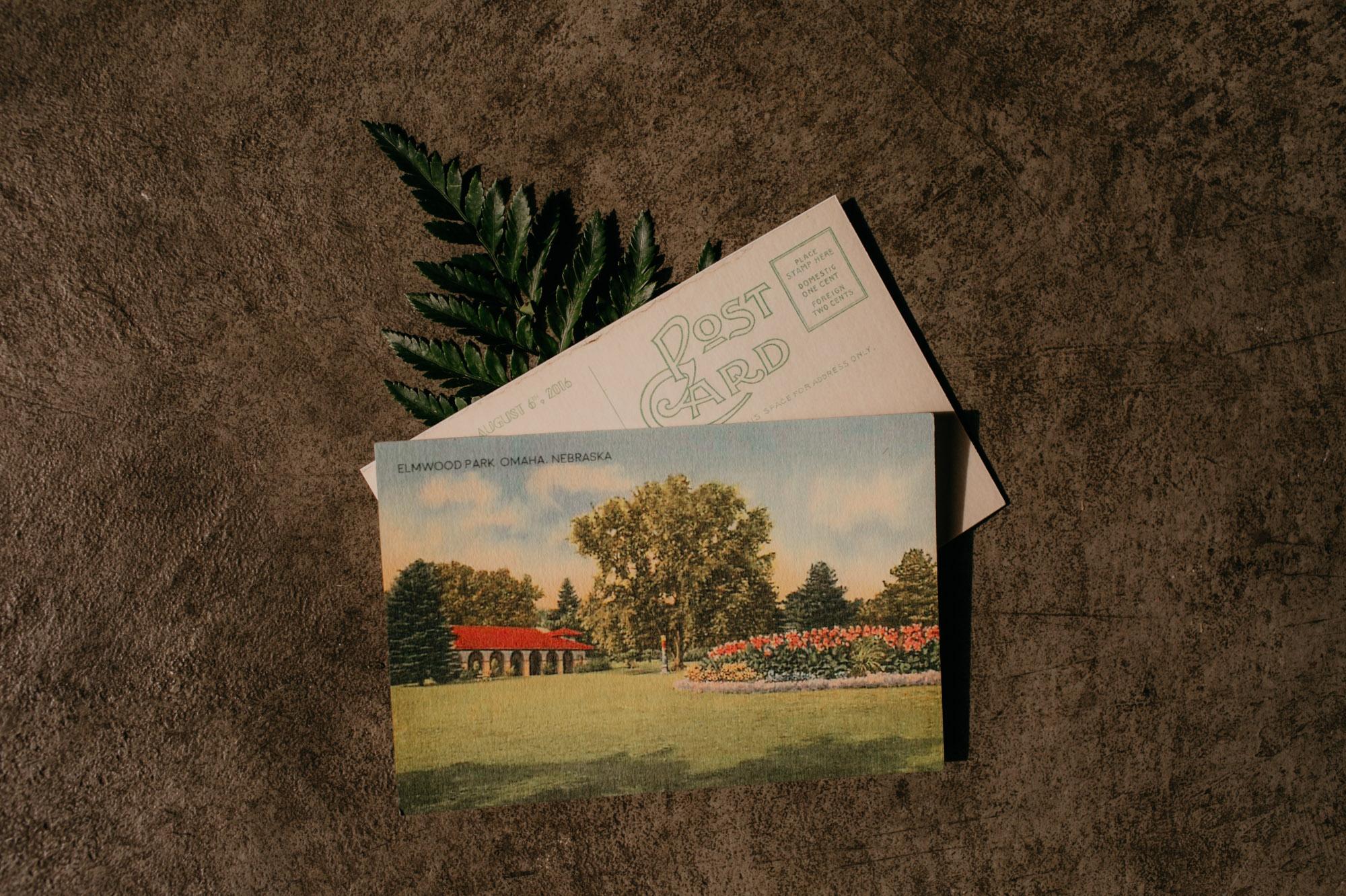 elmwood-park-wedding-photographer-nicole-jon-19.jpg