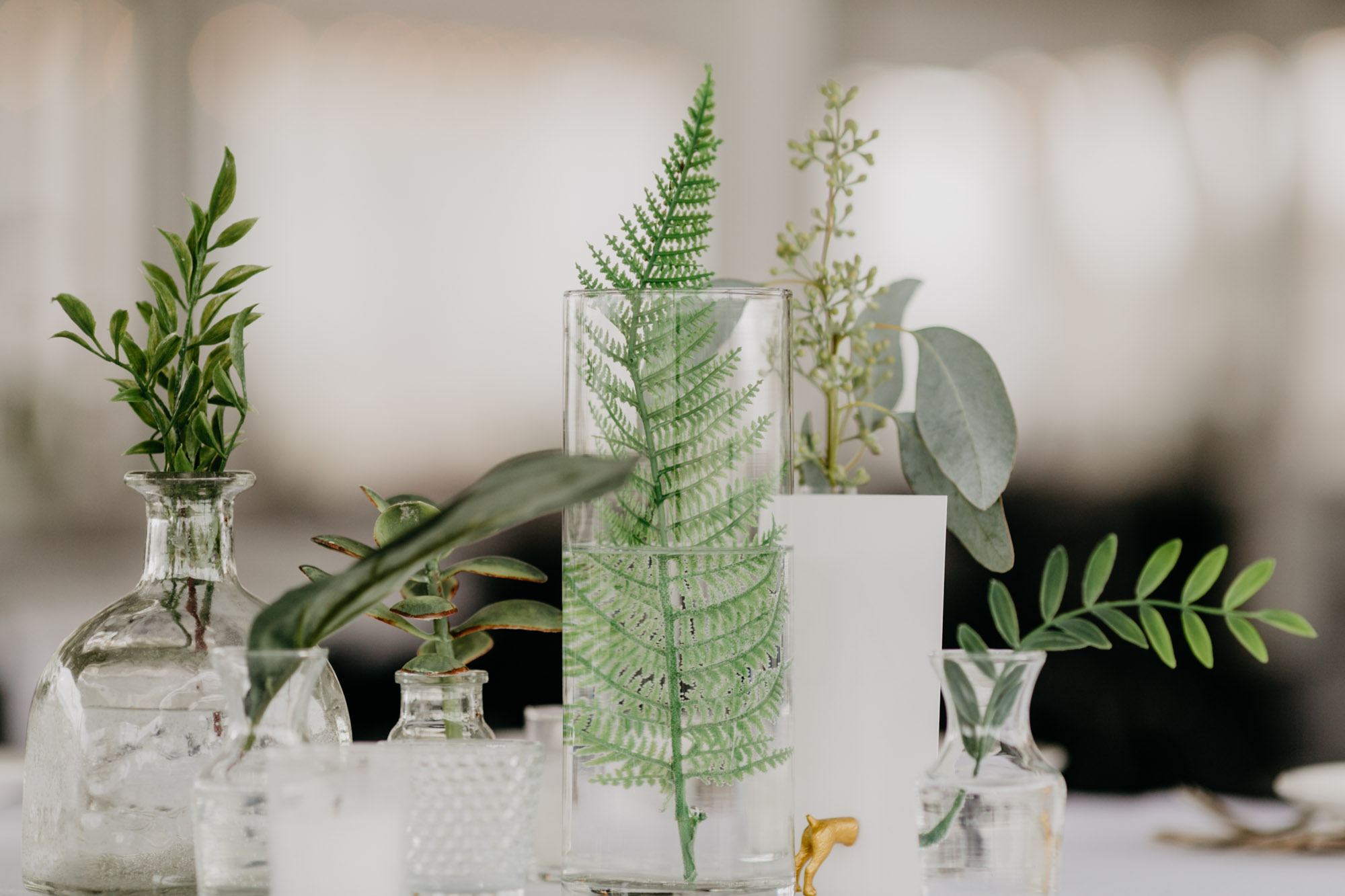 country-pines-wedding-photogrpaher-11.jpg