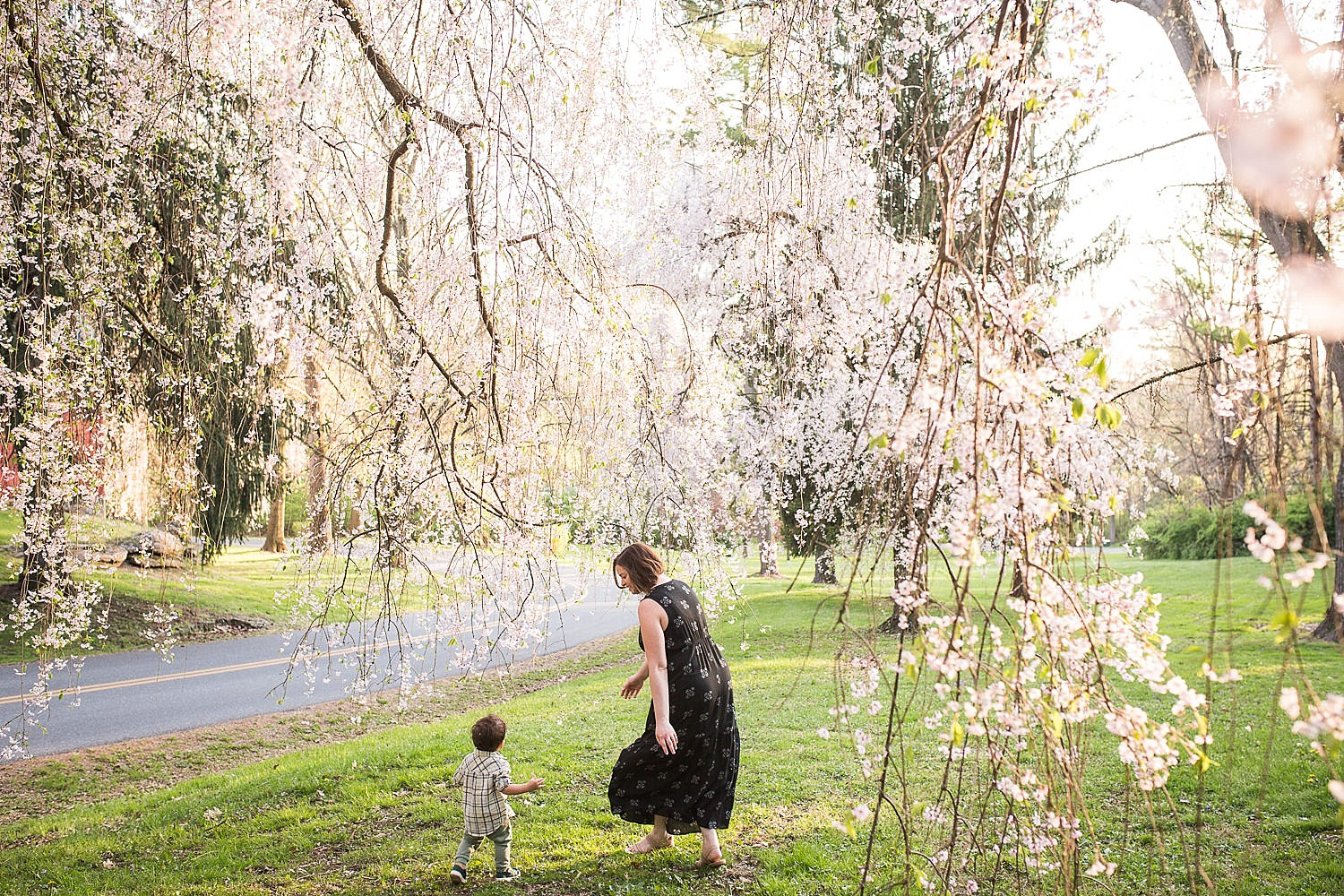 Happy photo of a mother walking with her toddler son in front of a flowering cherry tree at Buchmiller Park.