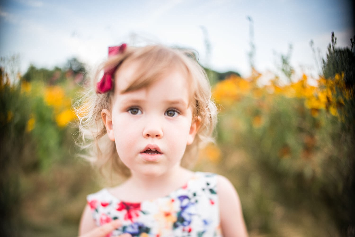 Lititz_family_photographer_wildflower_field-15.jpg