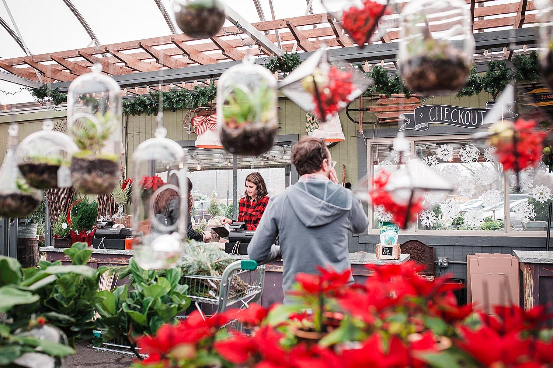 freys_greenhouse_christmas_mini_session_photography_8.jpg