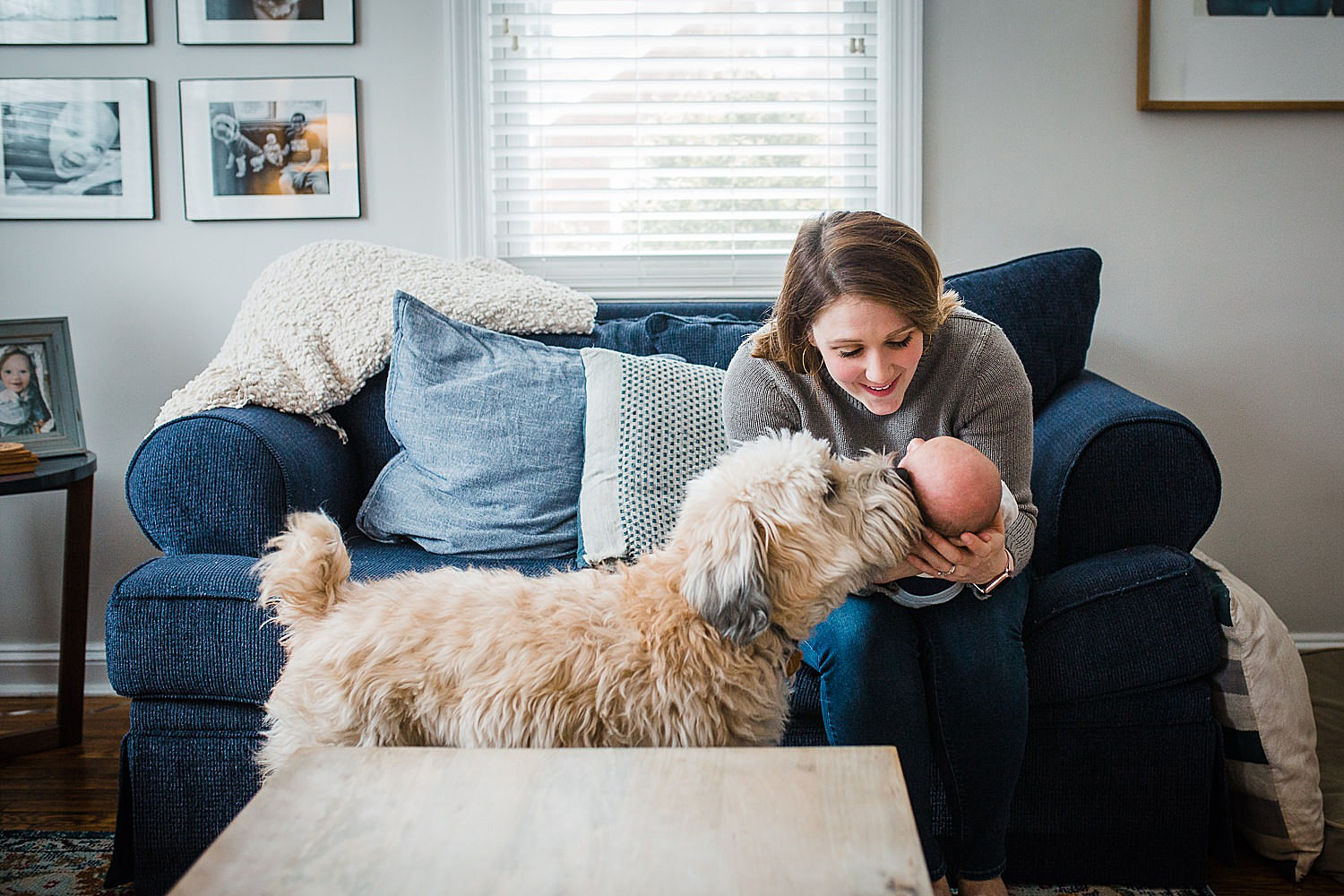 Photo of a mother smiling down at her newborn son while the family dog sniffs his head.