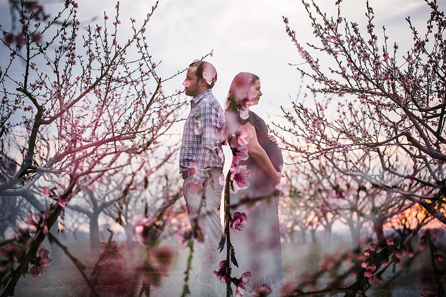Spring maternity session at Kauffman's Orchard in Lancaster, PA