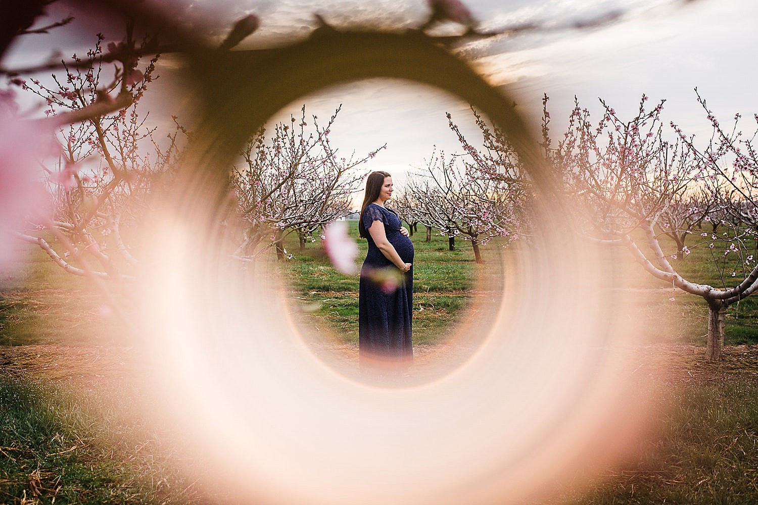 Kauffman's Orchard maternity session in Lancaster, PA