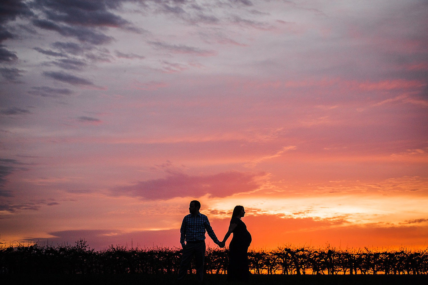 Silhouette photo of a pregnant woman walking with her husband in an orchard at sunset.