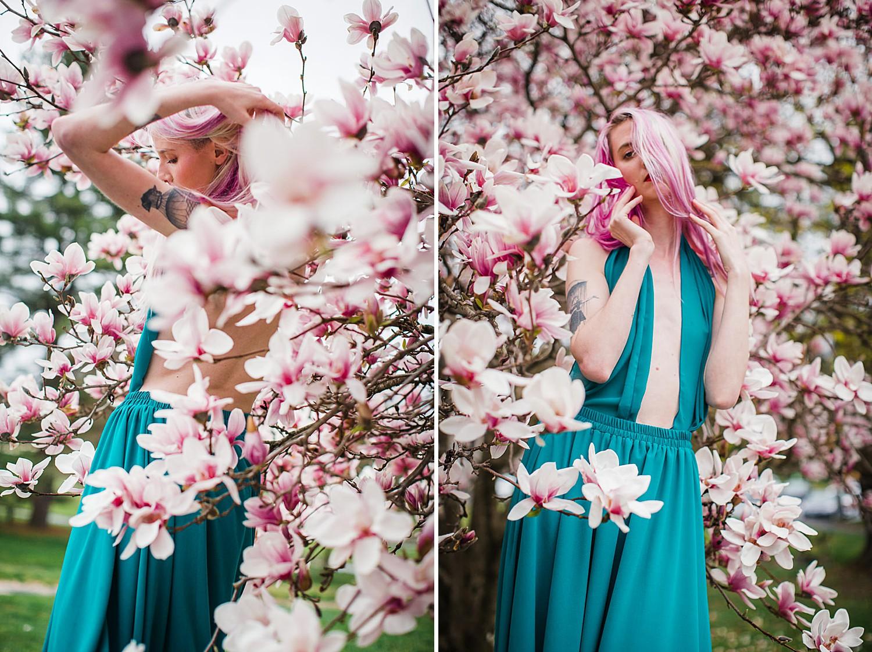 magnolia blossom portrait in lancaster, pa