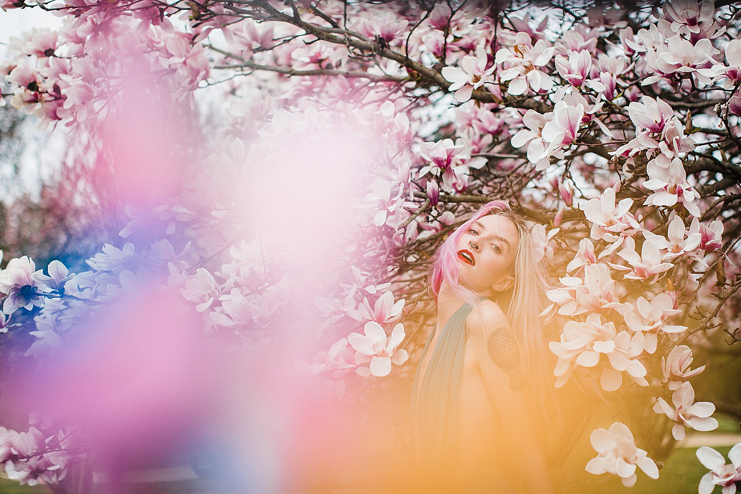 Photo of a young woman with pink hair and a teal dress standing in a tree of magnolia blossoms.