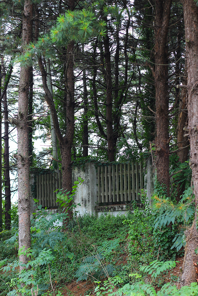 Wooded-fence.jpg