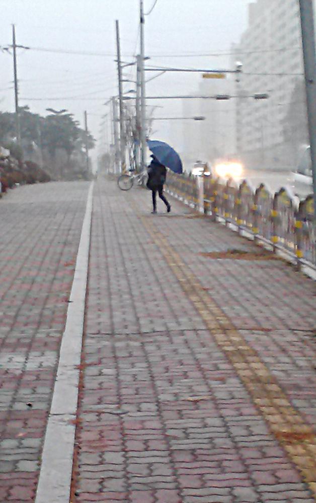 Umbrella-in-snow-1.jpg