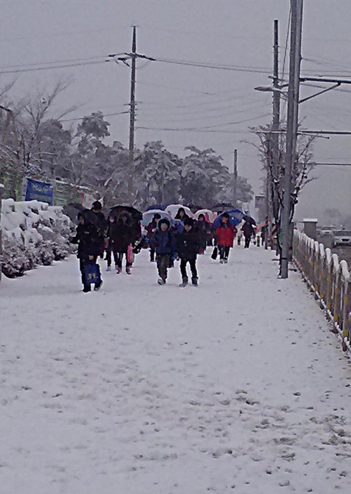 Umbrella-in-snow-2.jpg