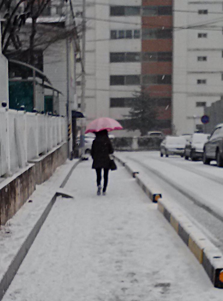 Umbrella-in-snow-6.jpg