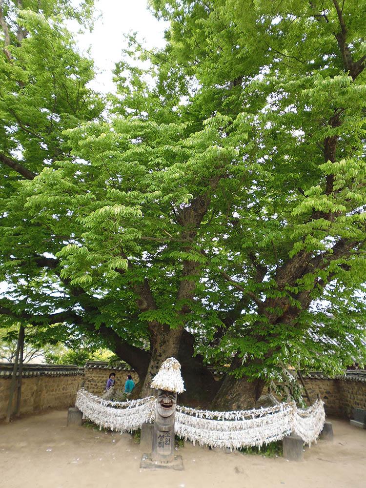 Spirit-tree-2.jpg