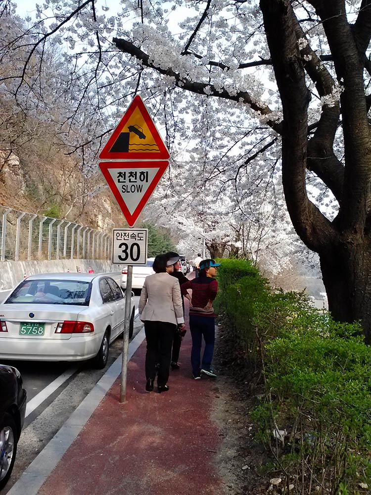 Dam-Sign.jpg
